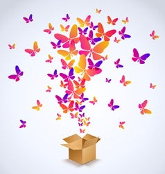 Box and butterfly spring 2016 vector image vector image