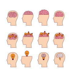 set of heads with brains in white background vector image