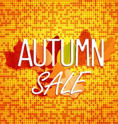 Autumn sale concept color of autumn leaves vector