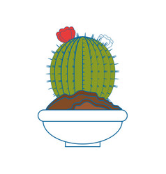 Cactus desert plant vector