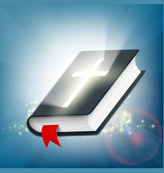 Holy bible on the background of light rays vector