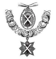Insignia of the order of the thistle is formed of vector