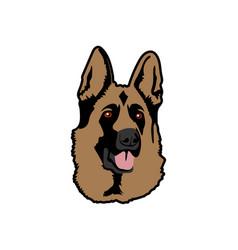 isolated german shepherd dog on white background vector image