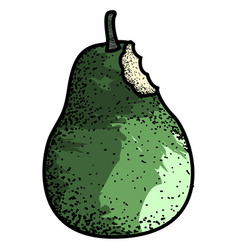 isolated vintage pear vector image