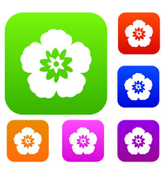 rose of sharon korean flower set collection vector image