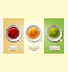 set with cups tea green black herbal vector image