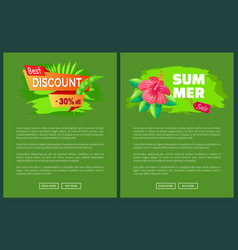 summer sale emblems exotic pink flower web posters vector image