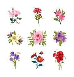 Garden Flowers Set vector image vector image