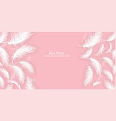 Feathers background realistic white vector