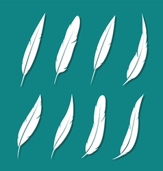 Group of feather white vector image