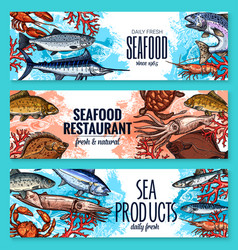 Seafood banners of sketch fresh fish vector