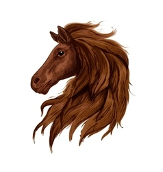 Sketch of brown horse head with arabian stallion vector