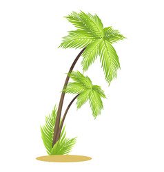 Tall tropical palm trees on small piece of sand vector