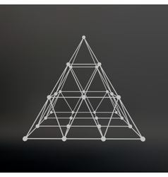 Wireframe mesh Polygonal pyramid Pyramid of the vector image vector image