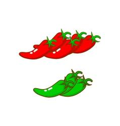 chili vector image