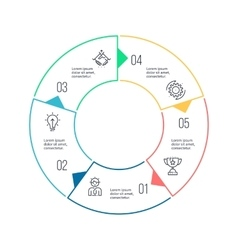 Circular chart diagram with 5 steps options vector