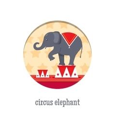 Circus elephant acrobat vector