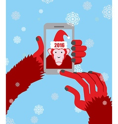 New year selfie Monkey hooded Santa Claus makes a vector image