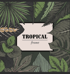 template with frame of hand drawn tropical vector image