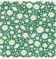 Wild chamomile seamless floral background vector