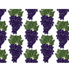 Red grapes clusters pattern vector image