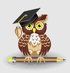 scientist clever owl with pencil and in cap vector image