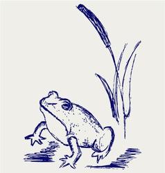 Frog sketch vector image
