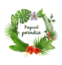 Wreath made of tropical leaves and flowers vector image