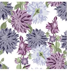 dahlia seamless pattern vintage violet vector image