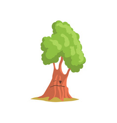 green oak tree with face forest or park plant vector image
