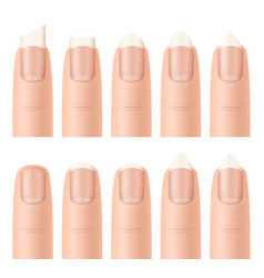 Realistic detailed 3d nail forms set vector