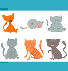 adorable cats and kittens characters set vector image