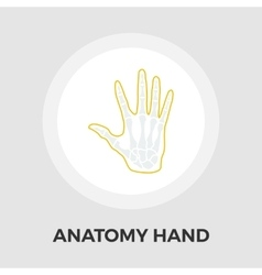 Anatomy hand Flat Icon vector image