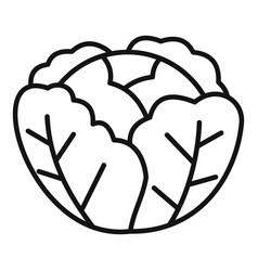 Cabbage icon outline style vector