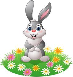 cartoon rabbit on the grass vector image
