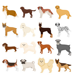 dog pooch breed and other web icon in cartoon vector image