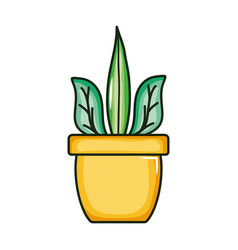plant nature in ceramic pot vector image