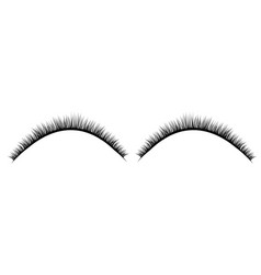 realistic collection of false lashes vector image