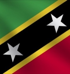 Saint Kitts and Nevis flag vector