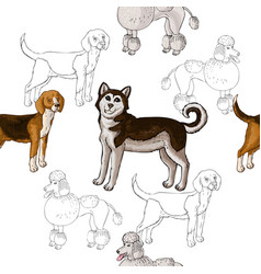 seamless pattern with dogs hand drawn dogs vector image