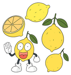 set of lemon vector image