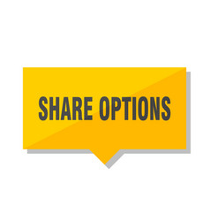 share options price tag vector image