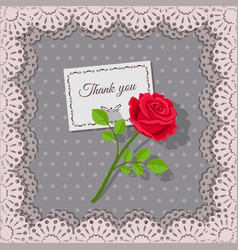 thank you card and rose flower on background lace vector image