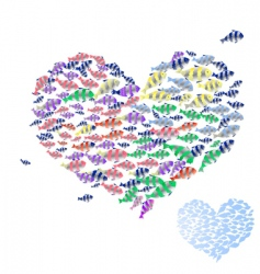 valentine from marine fish vector image vector image