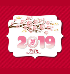 Chinese new year 2019 background design year of vector