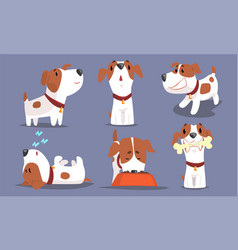 Cute beagle dog collection funny pet animal vector