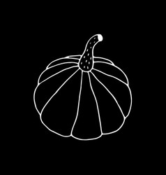 hand drawn pumpkin drawing vector image
