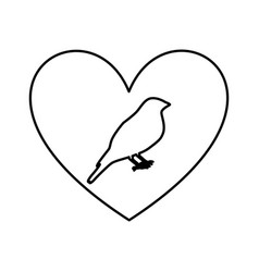 heart romantic with bird vector image