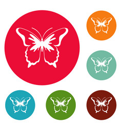 insect butterfly icons circle set vector image