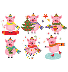 set of isolated christmas cheerful pigs vector image
